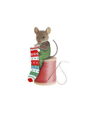 Mouse on Spool by J Hovenstine Studios