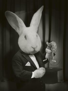 Rabbit Magician BW by J Hovenstine Studios