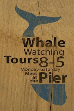 Whale Sign on Wood #1 by J Hovenstine Studios