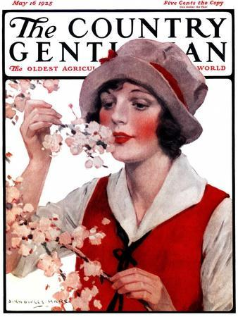 """""""Tree Blossoms,"""" Country Gentleman Cover, May 16, 1925"""