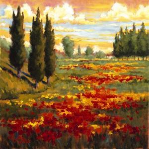 Tuscany in Bloom I by J.m. Steele