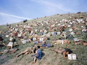 """Extras Playing Dead People Hold Numbered Cards Between Takes During Filming of """"Spartacus"""" by J^ R^ Eyerman"""