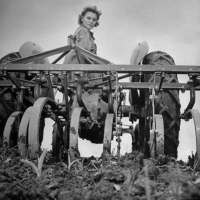 Patricia Colleen Altree Harrowing a Corn Field by J. R. Eyerman
