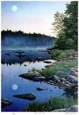 Full Moon Bay by J. Vanderbrink