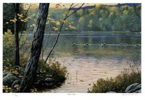Golden Pond by J. Vanderbrink