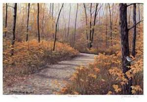 Maple Forest by J. Vanderbrink