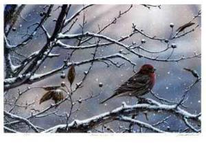 Winter is Upon Us by J. Vanderbrink