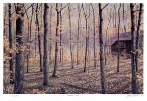 Woodland Retreat by J. Vanderbrink