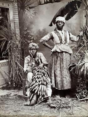 Women, Jamaica by J. W. Cleary