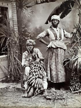 Women, Jamaica by J. W. Cleary