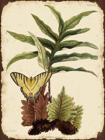 https://imgc.allpostersimages.com/img/posters/j2016-ferns-on-vintage-tin-e_u-L-Q1CAM6H0.jpg?artPerspective=n