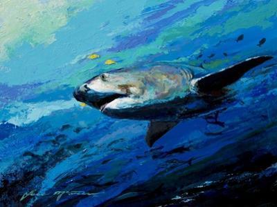 The Mighty Bull Shark by Jace D. McTier