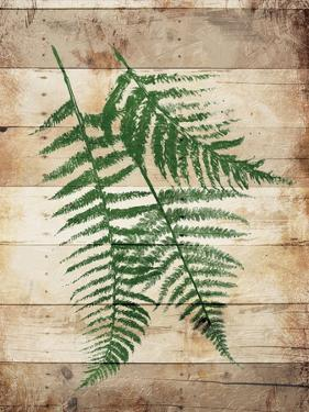 Ferns On Wood Mate by Jace Grey
