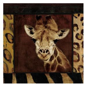 Giraffe by Jace Grey