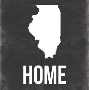 Illinois by Jace Grey