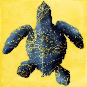 Map Turtle Y Indigo by Jace Grey