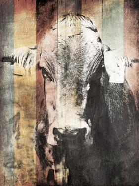 Miultiwood Vintage Cow by Jace Grey