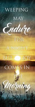 Morning Joy by Jace Grey