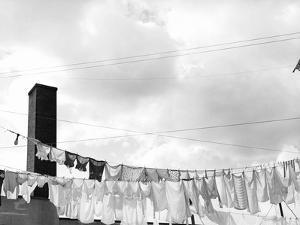 Laundry Drying on Clotheslines by Jack Delano