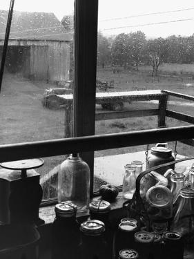 Rainy Day on a Farm by Jack Delano