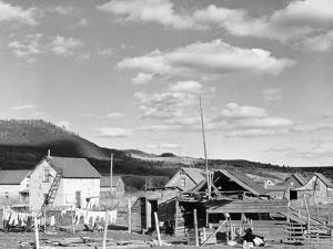 Rural Slum by Jack Delano