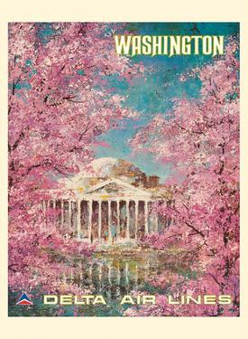 Washington DC - White House - Delta Air Lines by Jack Laycox
