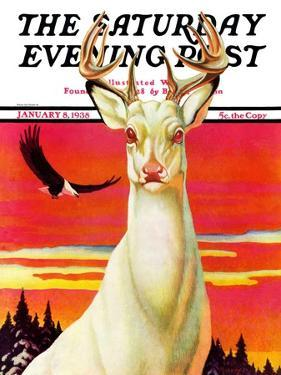 """Albino Deer,"" Saturday Evening Post Cover, January 8, 1938 by Jack Murray"