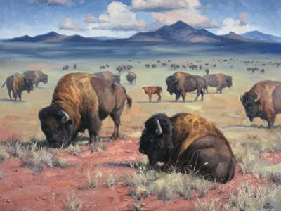 Home on the Range by Jack Sorenson