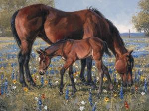 Wildflower by Jack Sorenson