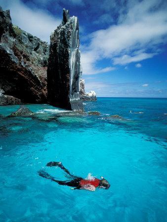 Snorkeler, Isla Tortuga, Galapagos Islands, Ecuador