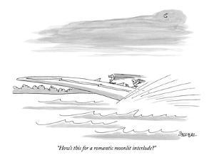 """""""How's this for a romantic moonlit interlude?"""" - New Yorker Cartoon by Jack Ziegler"""