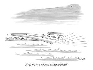 """How's this for a romantic moonlit interlude?"" - New Yorker Cartoon by Jack Ziegler"