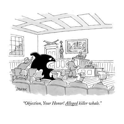 """""""Objection, Your Honor! Alleged killer whale."""" - New Yorker Cartoon"""