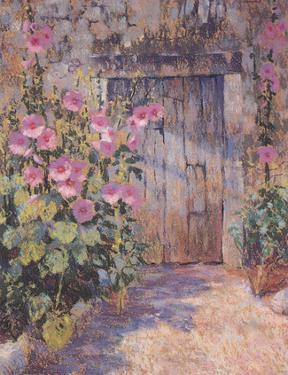 Hollyhocks Round The Old by Jackie Simmonds