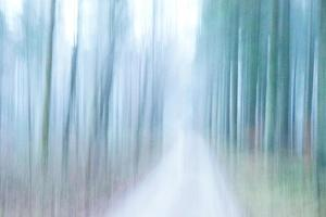 Weeping Wind by Jacob Berghoef
