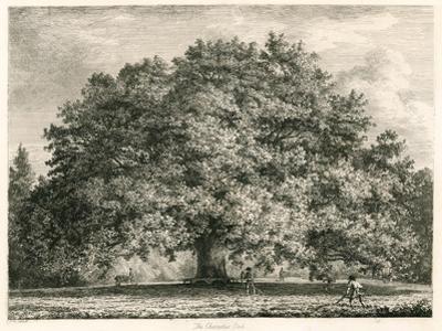 The Chandos Oak, Michendon House, Southgate, London