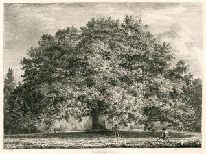 The Chandos Oak, Michendon House, Southgate, London by Jacob George Strutt