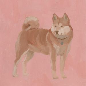 Shiba Inu I by Jacob Green