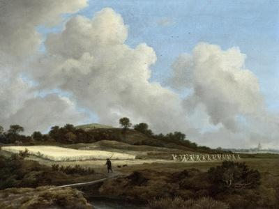 View of Grainfields with a Distant Town, c.1670