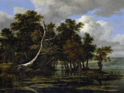 Oak Trees at a Lake with Water Lilies
