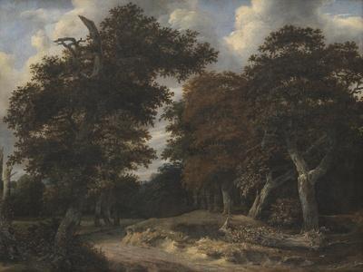 Road Through an Oak Forest, 1646-47