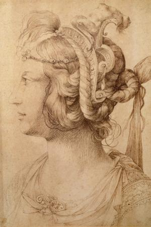 Profile of Woman Wearing a Fantastical Head-Dress with Grotesque Masks by Jacopo Ligozzi