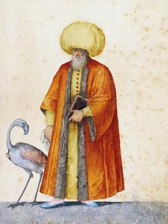 Turkish Man with Flamingo by Jacopo Ligozzi