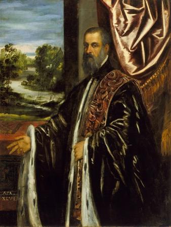 Portrait of Marino Grimani, 1578 by Jacopo Robusti Tintoretto
