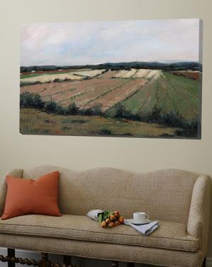 New landscape 5 by Jacques Clement