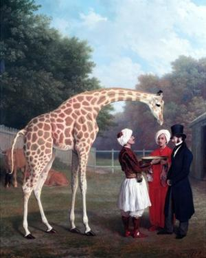 Nubian Giraffe by Jacques-Laurent Agasse