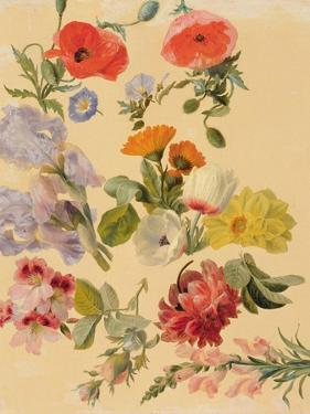 Studies of Summer Flowers by Jacques-Laurent Agasse