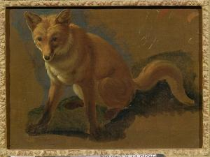 Study of a Fox (Oil on Panel) by Jacques-Laurent Agasse
