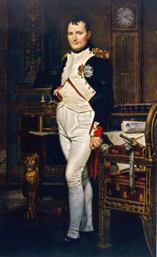 Napoleon Emperor Circa 1804 by Jacques-Louis David