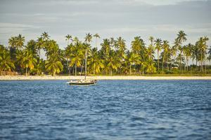 A Dhow Moored Off the Coast of Matemo Island, Mozambique by Jad Davenport
